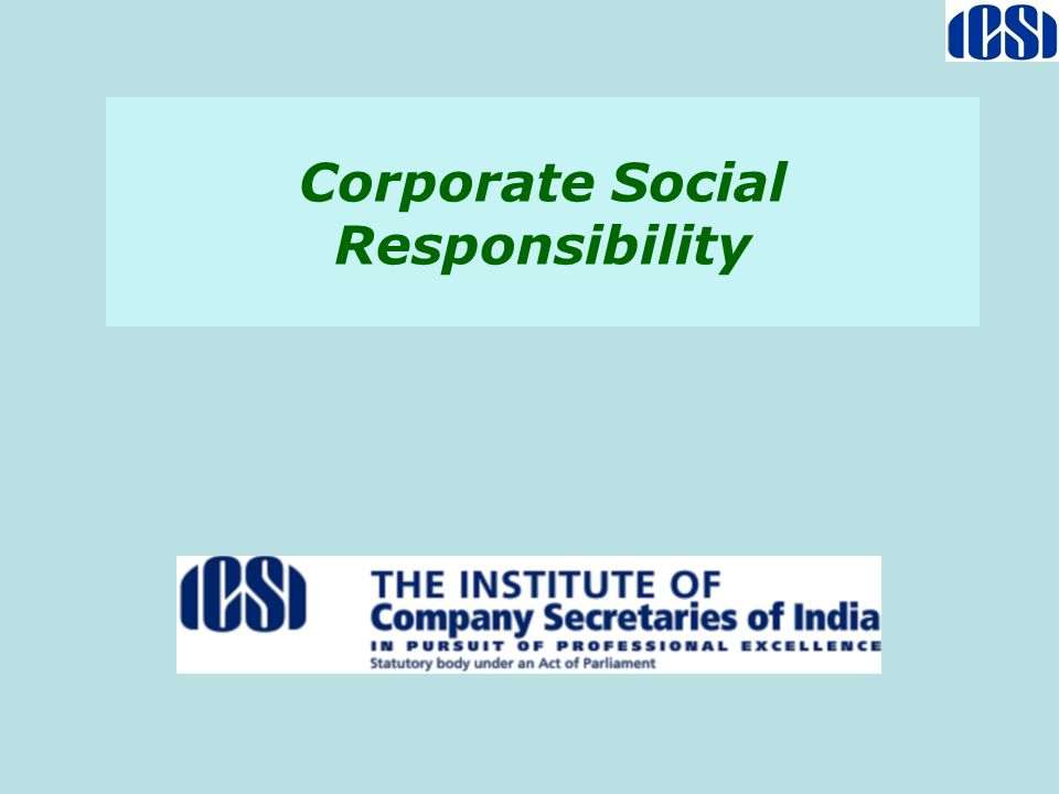 Issue 5 Should a section 8 company also do CSR.