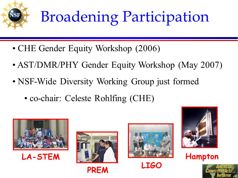Broadening Participation CHE Gender Equity Workshop (2006) AST/DMR/PHY Gender Equity Workshop (May 2007) NSF-Wide Diversity Working Group just formed