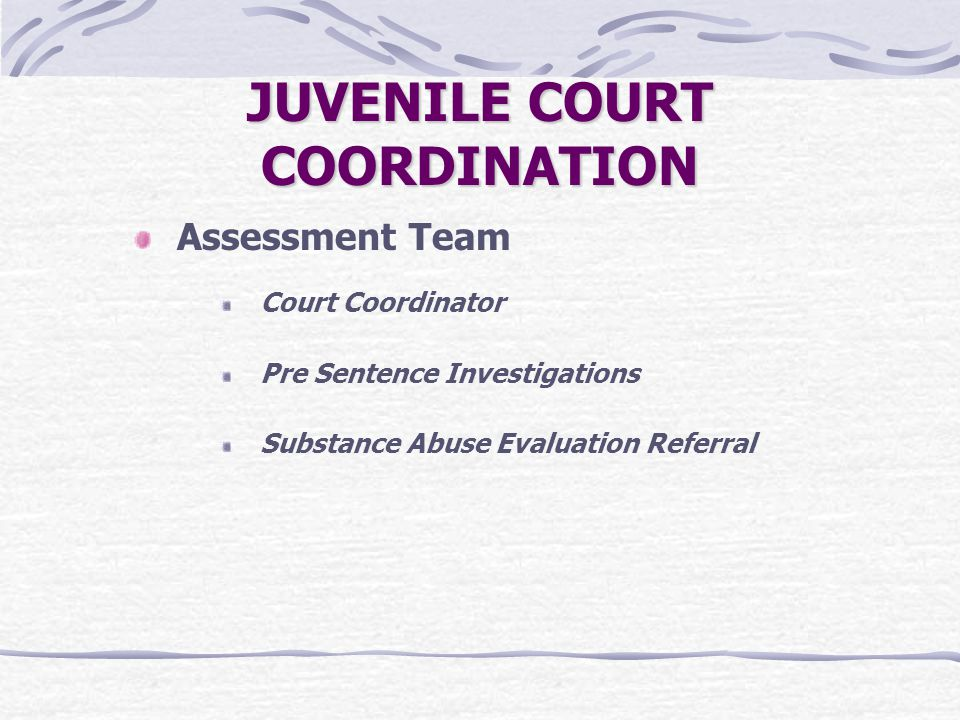 JUVENILE COURT COORDINATION Assessment Team Court Coordinator Pre Sentence Investigations Substance Abuse Evaluation Referral