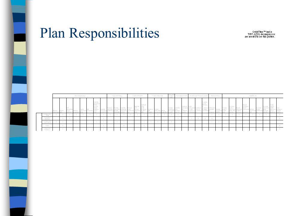 Plan Responsibilities
