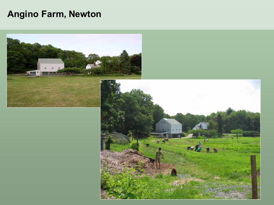 Angino Farm, Newton