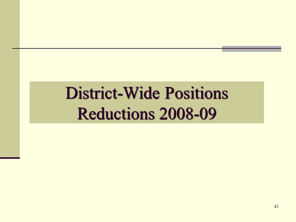 43 District-Wide Positions Reductions 2008-09