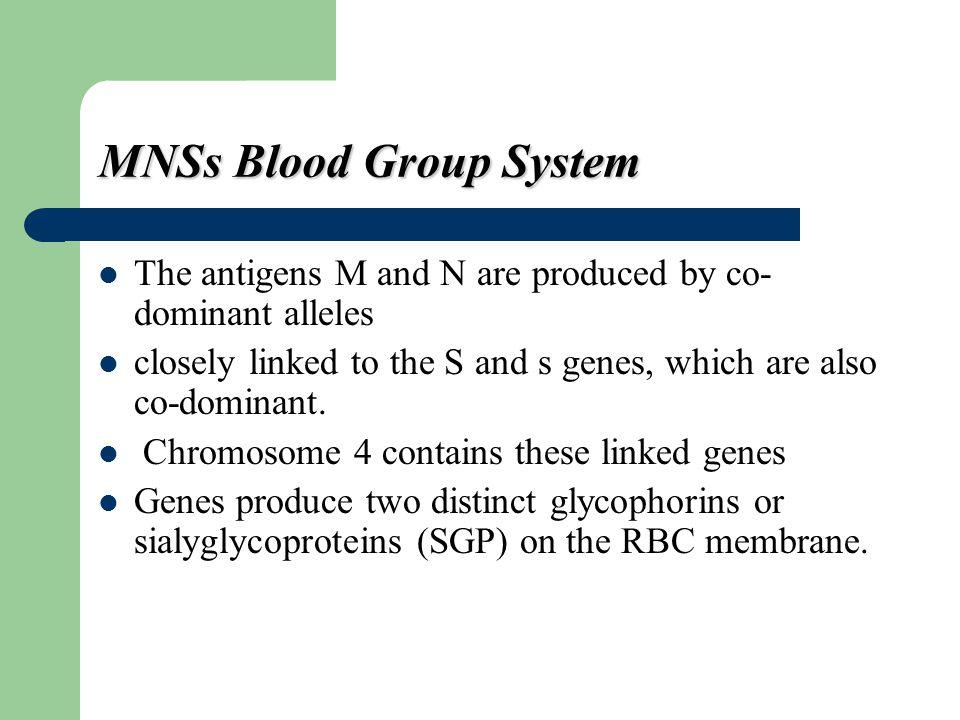 MNSs Blood Group System The antigens M and N are produced by co- dominant alleles closely linked to the S and s genes, which are also co-dominant. Chr