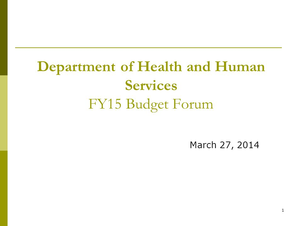 1 Department of Health and Human Services FY15 Budget Forum March 27, 2014