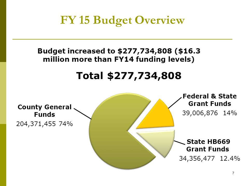 8 FY15 DHHS Budget by Service Area
