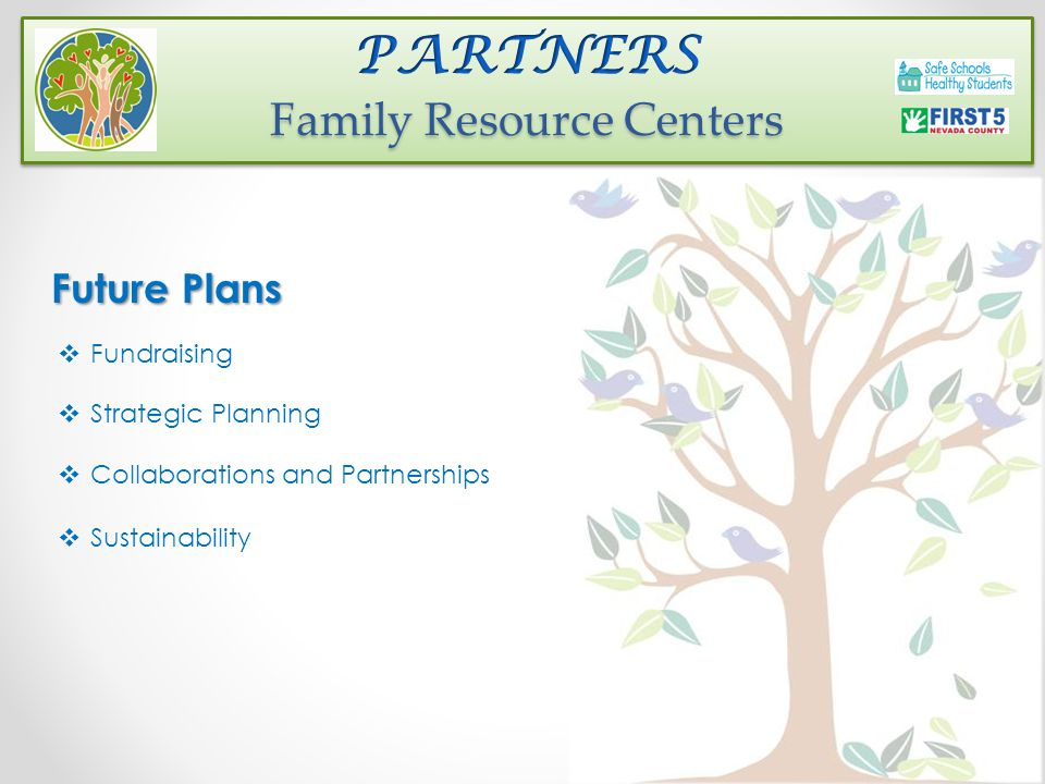 Future Plans  Fundraising  Strategic Planning  Collaborations and Partnerships  Sustainability