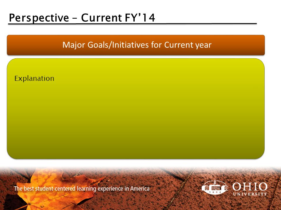 Perspective – Current FY'14 Major Goals/Initiatives for Current year Explanation