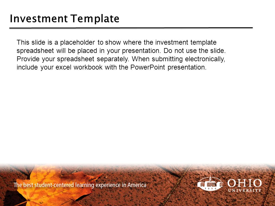 Investment Template This slide is a placeholder to show where the investment template spreadsheet will be placed in your presentation. Do not use the