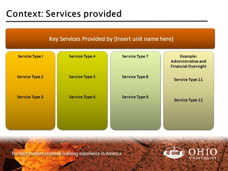 Context: Services provided Key Services Provided by [Insert unit name here] Service Type I Service Type 2 Service Type 3 Service Type 4 Service Type 5 Service Type 6 Service Type 7 Service Type 8 Service Type 9 Example: Administrative and Financial Oversight Service Type 11 Service Type 12