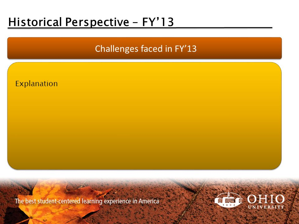 Historical Perspective – FY'13 Challenges faced in FY'13 Explanation