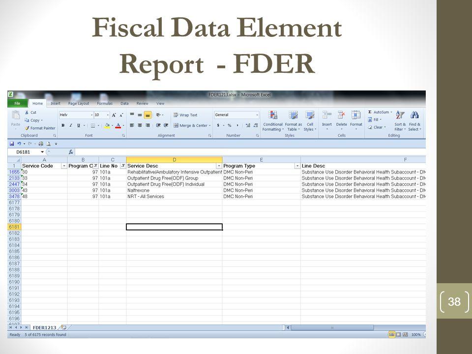 Fiscal Data Element Report - FDER 38