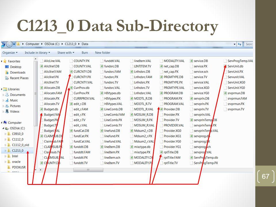 C1213_0 Data Sub-Directory 67