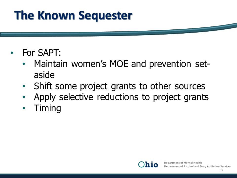 For SAPT: Maintain women's MOE and prevention set- aside Shift some project grants to other sources Apply selective reductions to project grants Timing 13