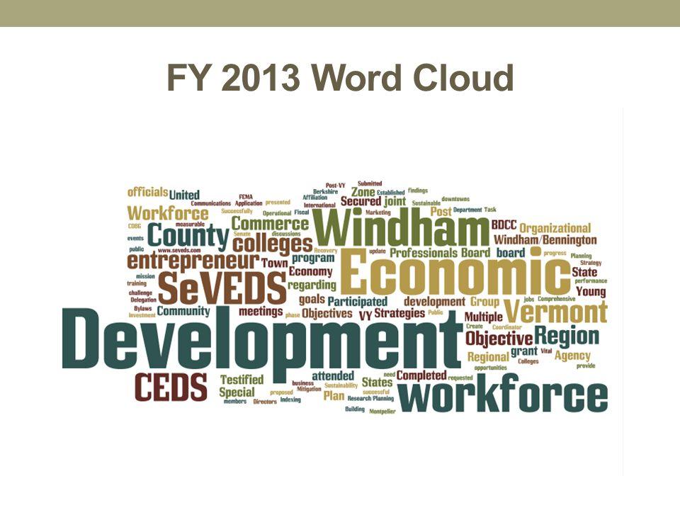 FY 2013 Word Cloud
