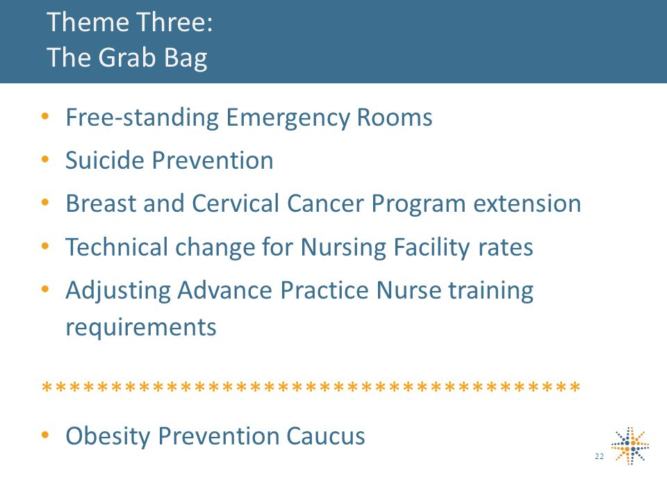 Theme Three: The Grab Bag Free-standing Emergency Rooms Suicide Prevention Breast and Cervical Cancer Program extension Technical change for Nursing Facility rates Adjusting Advance Practice Nurse training requirements *************************************** Obesity Prevention Caucus 22