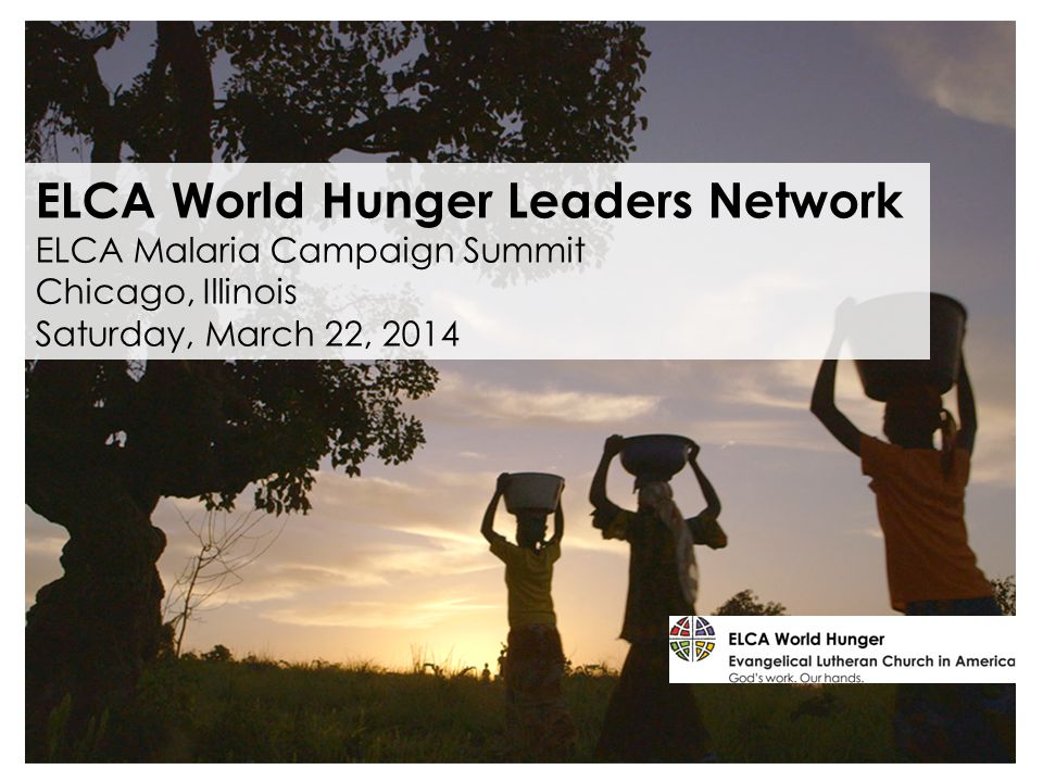 ELCA World Hunger Leaders Network ELCA Malaria Campaign Summit Chicago, Illinois Saturday, March 22, 2014
