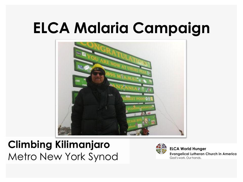 Climbing Kilimanjaro Metro New York Synod ELCA Malaria Campaign