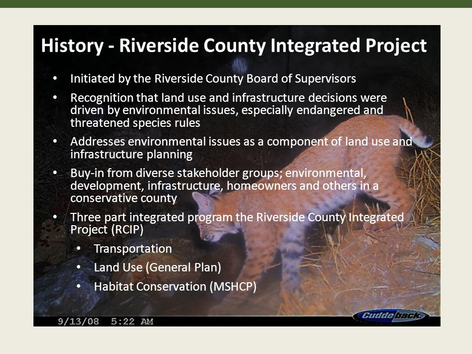 History - Riverside County Integrated Project Initiated by the Riverside County Board of Supervisors Recognition that land use and infrastructure decisions were driven by environmental issues, especially endangered and threatened species rules Addresses environmental issues as a component of land use and infrastructure planning Buy-in from diverse stakeholder groups; environmental, development, infrastructure, homeowners and others in a conservative county Three part integrated program the Riverside County Integrated Project (RCIP) Transportation Land Use (General Plan) Habitat Conservation (MSHCP)