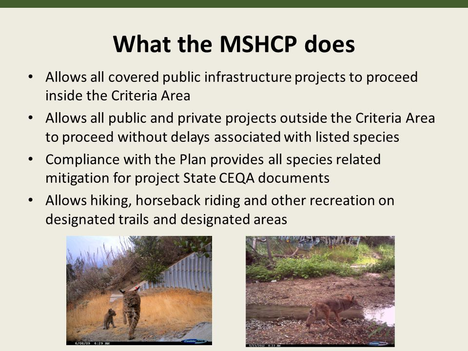 What the MSHCP does Allows all covered public infrastructure projects to proceed inside the Criteria Area Allows all public and private projects outside the Criteria Area to proceed without delays associated with listed species Compliance with the Plan provides all species related mitigation for project State CEQA documents Allows hiking, horseback riding and other recreation on designated trails and designated areas