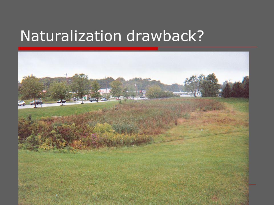 Naturalization vs.