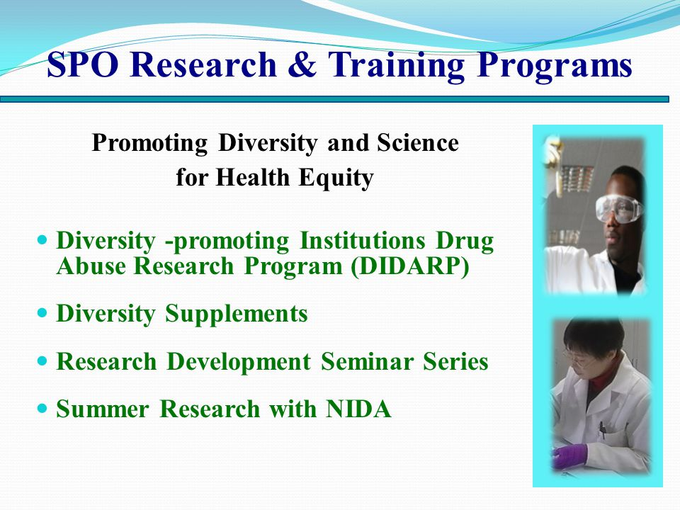 SPO Research & Training Programs Promoting Diversity and Science for Health Equity Diversity -promoting Institutions Drug Abuse Research Program (DIDARP) Diversity Supplements Research Development Seminar Series Summer Research with NIDA