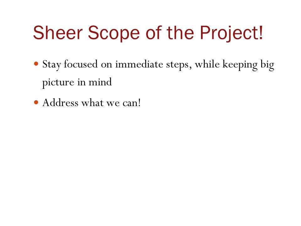 Sheer Scope of the Project! Stay focused on immediate steps, while keeping big picture in mind Address what we can!
