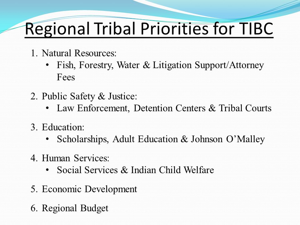 Regional Tribal Priorities for TIBC 1.Natural Resources: Fish, Forestry, Water & Litigation Support/Attorney Fees 2.Public Safety & Justice: Law Enforcement, Detention Centers & Tribal Courts 3.Education: Scholarships, Adult Education & Johnson O'Malley 4.Human Services: Social Services & Indian Child Welfare 5.Economic Development 6.Regional Budget