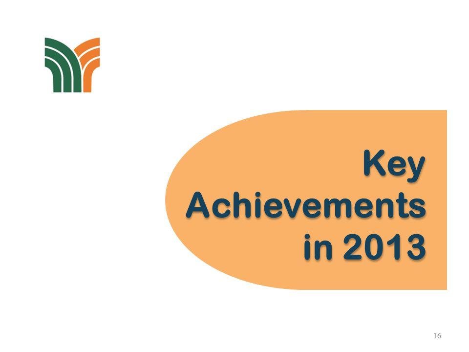 Key Achievements in 2013 Key Achievements in 2013 16