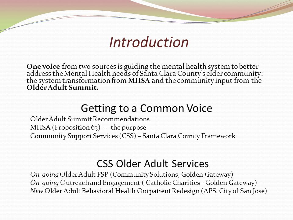 Introduction One voice from two sources is guiding the mental health system to better address the Mental Health needs of Santa Clara County's elder community: the system transformation from MHSA and the community input from the Older Adult Summit.