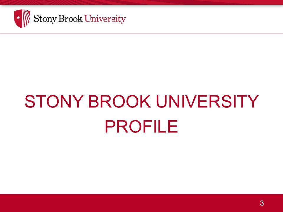 3 STONY BROOK UNIVERSITY PROFILE