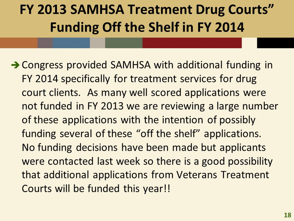 18 FY 2013 SAMHSA Treatment Drug Courts Funding Off the Shelf in FY 2014  Congress provided SAMHSA with additional funding in FY 2014 specifically for treatment services for drug court clients.