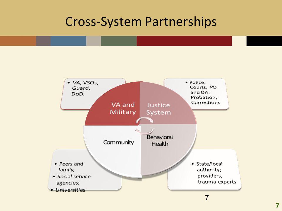 7 7 Cross-System Partnerships
