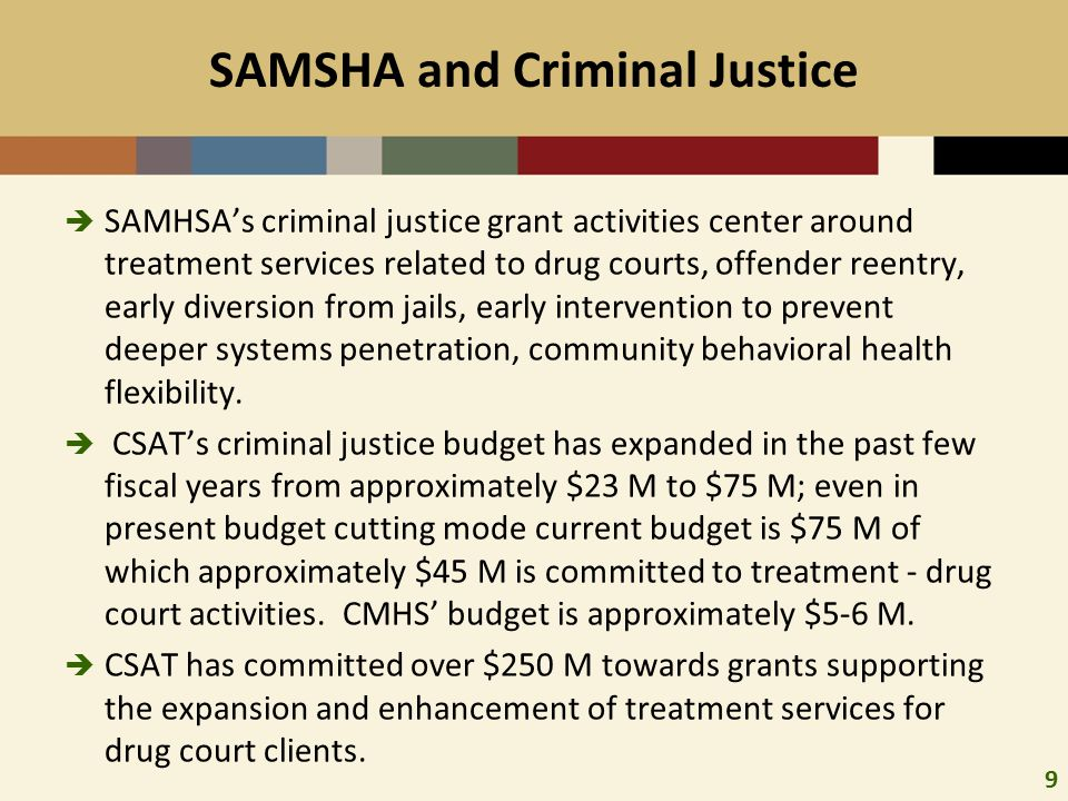 10 SAMHSA/CSAT Criminal Justice Grant Programs: Focus on Tx Capacity Expansion There are approximately 215 active grants in CSAT's criminal and juvenile justice portfolio:  115 Adult Drug Court grants including FY 2010, 2011, 2012 SAMHSA awards and joint grants with BJA adult drug court grant cohorts.