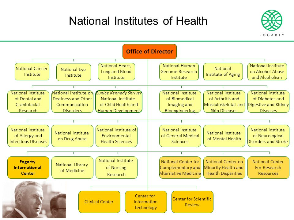 National Institutes of Health Office of Director National Cancer Institute National Eye Institute National Heart, Lung and Blood Institute National Human Genome Research Institute National Institute of Aging National Institute on Alcohol Abuse and Alcoholism National Institute of Allergy and Infectious Diseases National Institute of Arthritis and Musculoskeletal and Skin Diseases National Institute of Biomedical Imaging and Bioengineering Eunice Kennedy Shriver National Institute of Child Health and Human Development National Institute on Deafness and Other Communication Disorders National Institute of Dental and Craniofacial Research National Institute of Diabetes and Digestive and Kidney Diseases National Institute on Drug Abuse National Institute of Environmental Health Sciences National Institute of General Medical Sciences National Institute of Mental Health National Institute of Neurological Disorders and Stroke Fogarty International Center National Library of Medicine National Institute of Nursing Research National Center for Complementary and Alternative Medicine National Center on Minority Health and Health Disparities National Center For Research Resources Clinical Center Center for Information Technology Center for Scientific Review