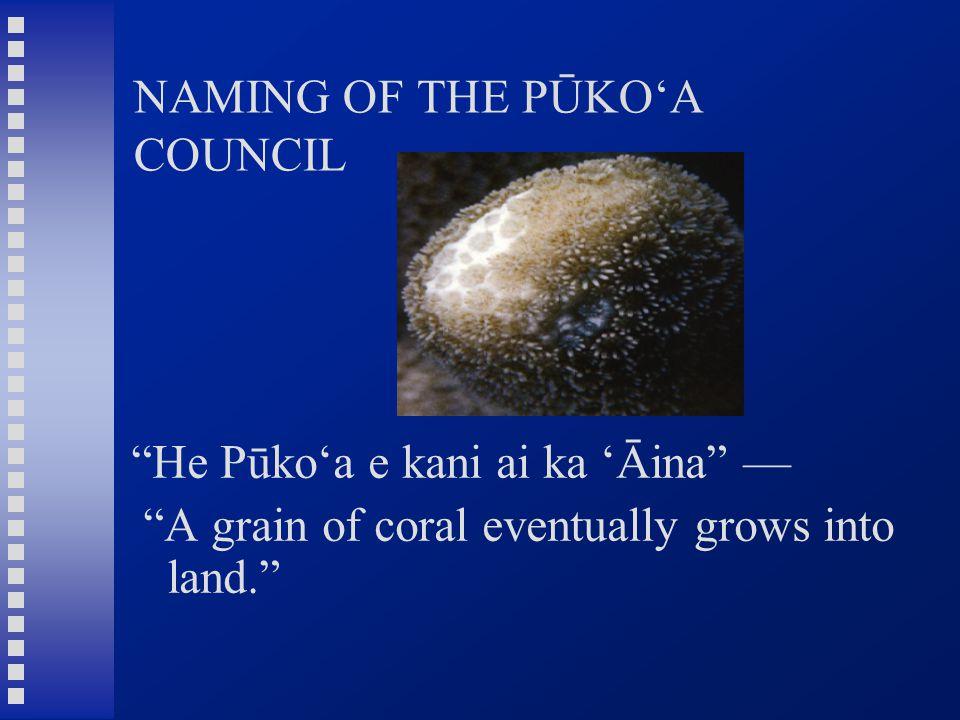 """NAMING OF THE PŪKO'A COUNCIL """"He Pūko'a e kani ai ka 'Āina"""" — """"A grain of coral eventually grows into land."""""""