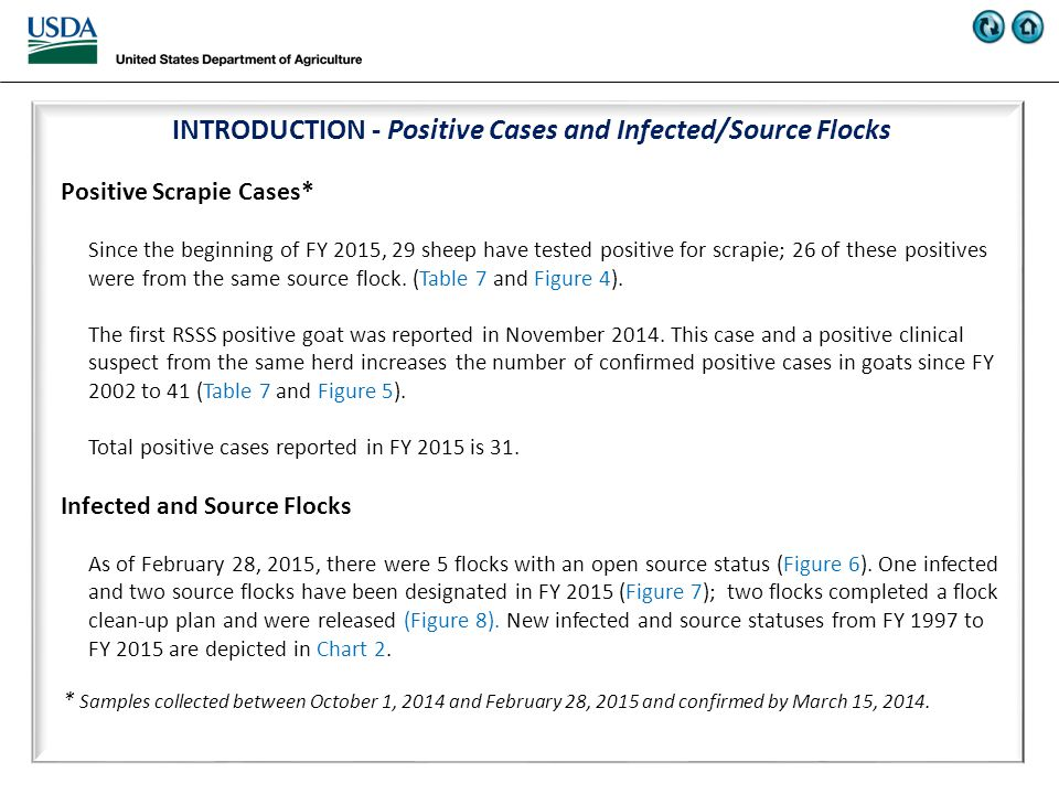 INTRODUCTION - Positive Cases and Infected/Source Flocks Positive Scrapie Cases* Since the beginning of FY 2015, 29 sheep have tested positive for scrapie; 26 of these positives were from the same source flock.