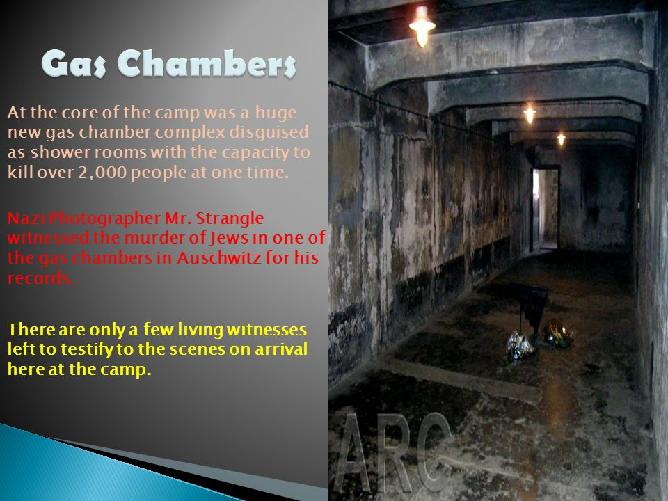The success of these experiments led to Zyklon B for all the gas chambers at the Auschwitz complex.