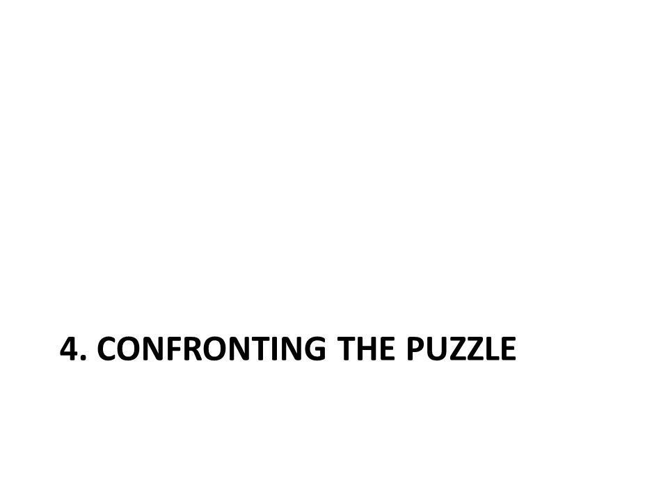 4. CONFRONTING THE PUZZLE
