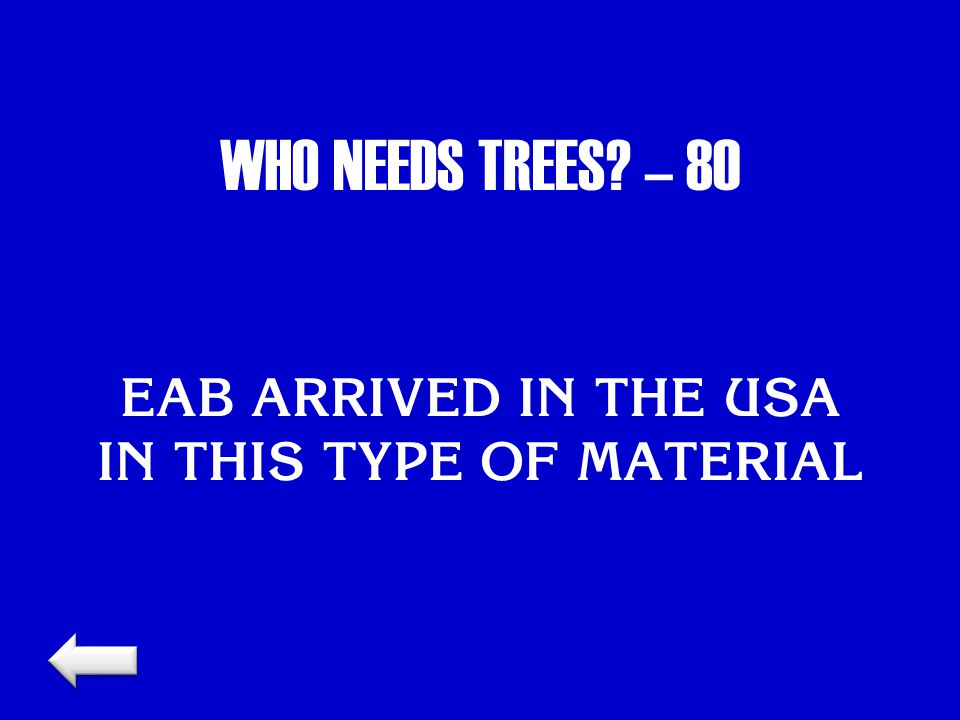 WHO NEEDS TREES? – 80 EAB ARRIVED IN THE USA IN THIS TYPE OF MATERIAL