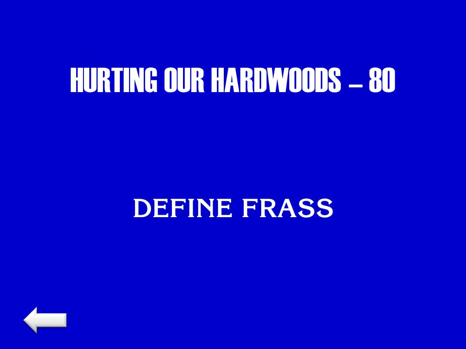 HURTING OUR HARDWOODS – 80 DEFINE FRASS
