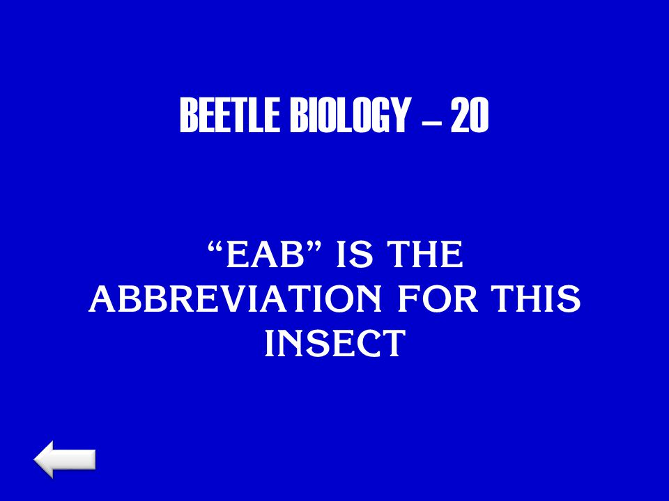 BEETLE BIOLOGY – 20 EAB IS THE ABBREVIATION FOR THIS INSECT