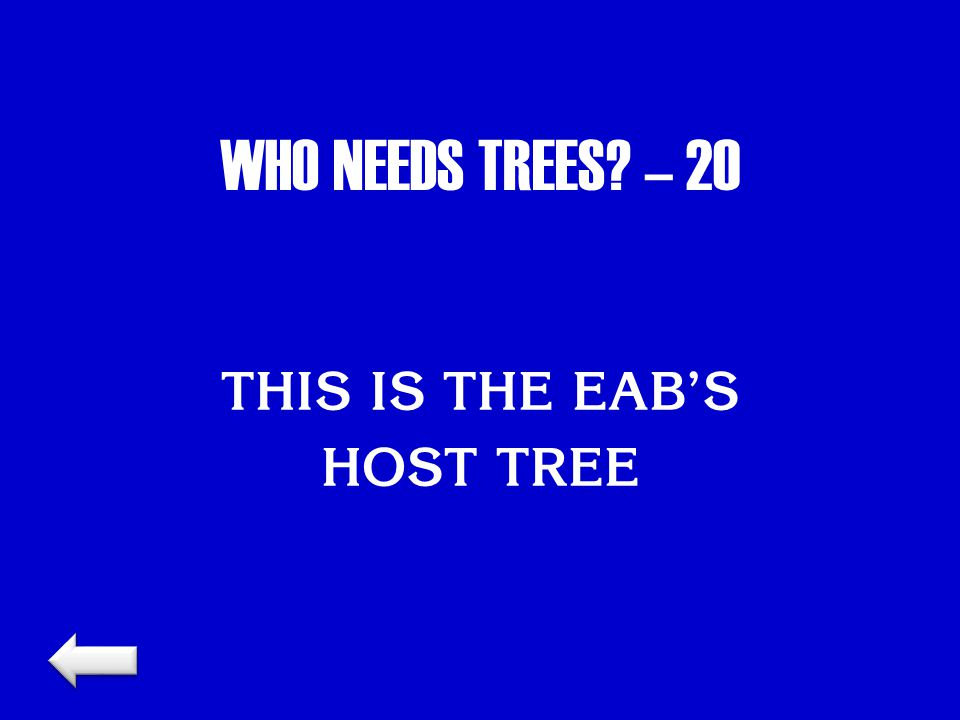 WHO NEEDS TREES? – 20 THIS IS THE EAB'S HOST TREE