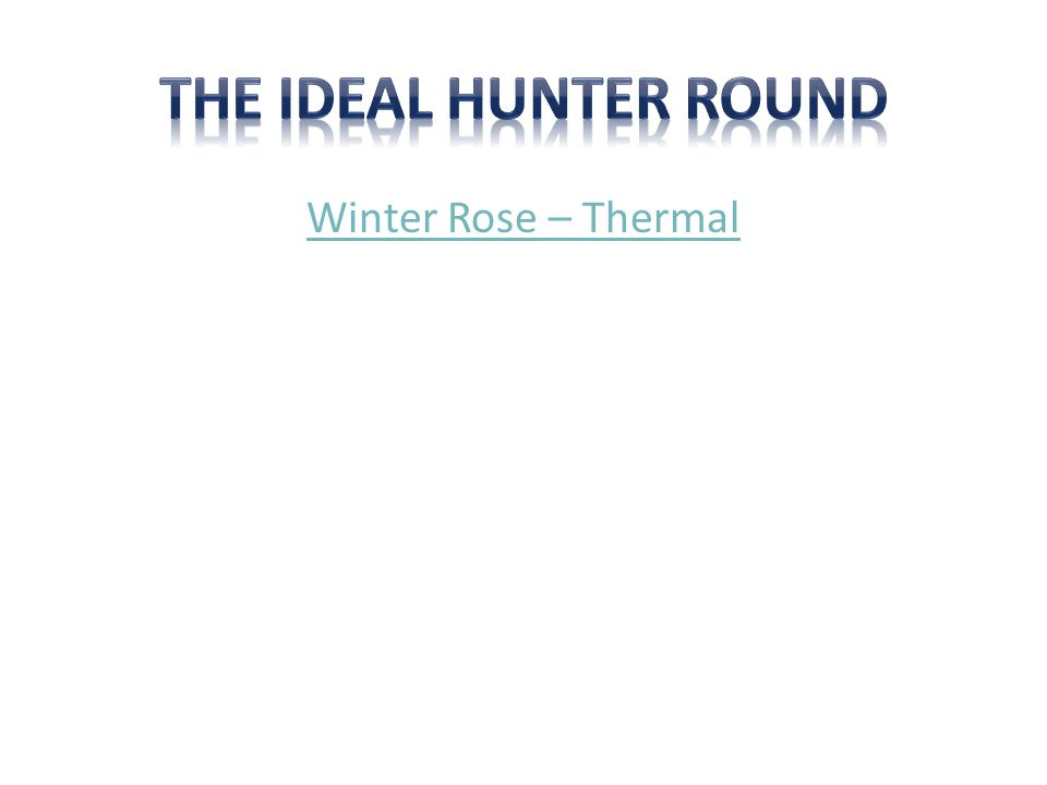 Winter Rose – Thermal