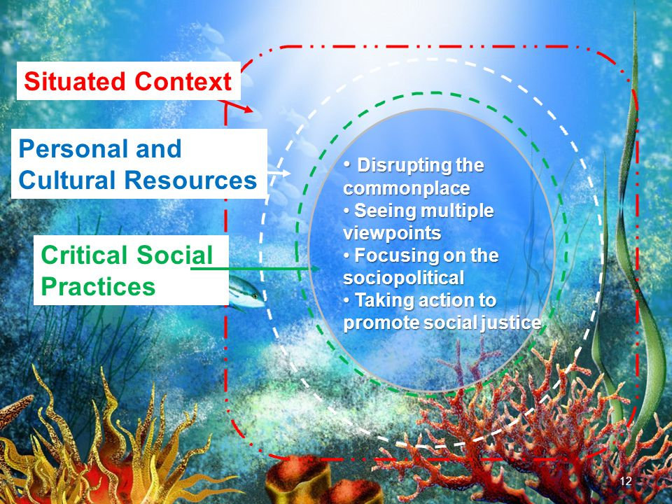 12 Situated Context Personal and Cultural Resources Critical Social Practices Disrupting the commonplace Disrupting the commonplace Seeing multiple viewpoints Seeing multiple viewpoints Focusing on the sociopolitical Focusing on the sociopolitical Taking action to promote social justice Taking action to promote social justice