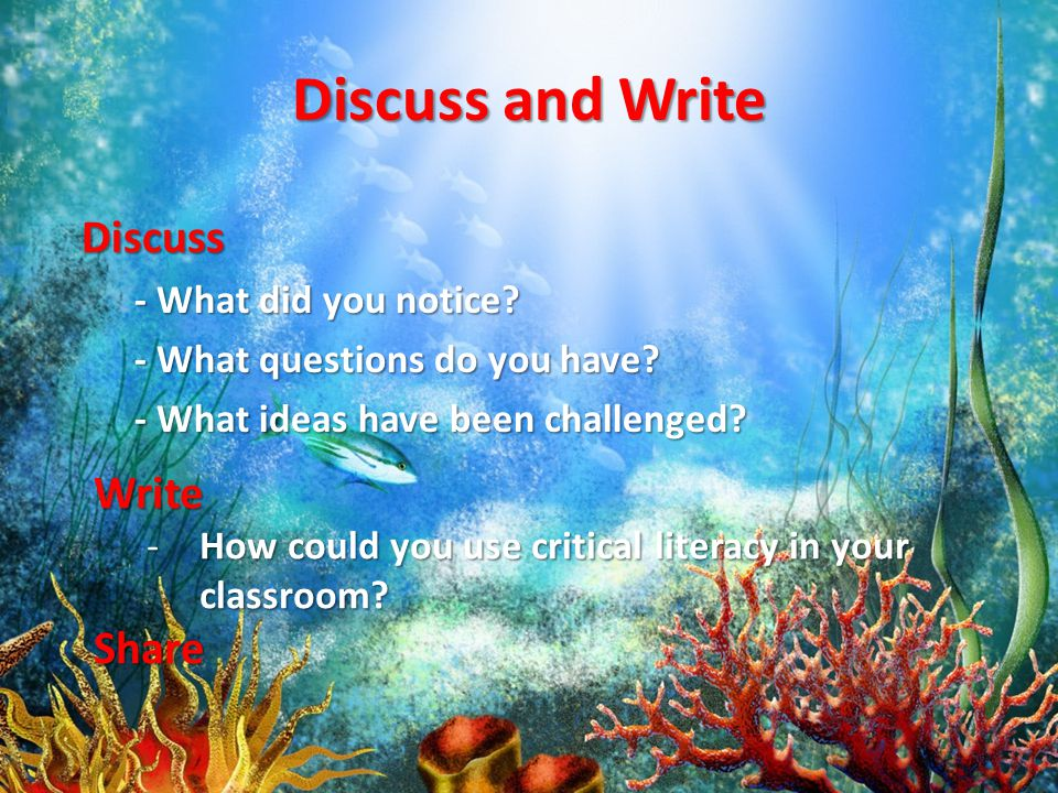 Discuss and Write Discuss - What did you notice. - What questions do you have.