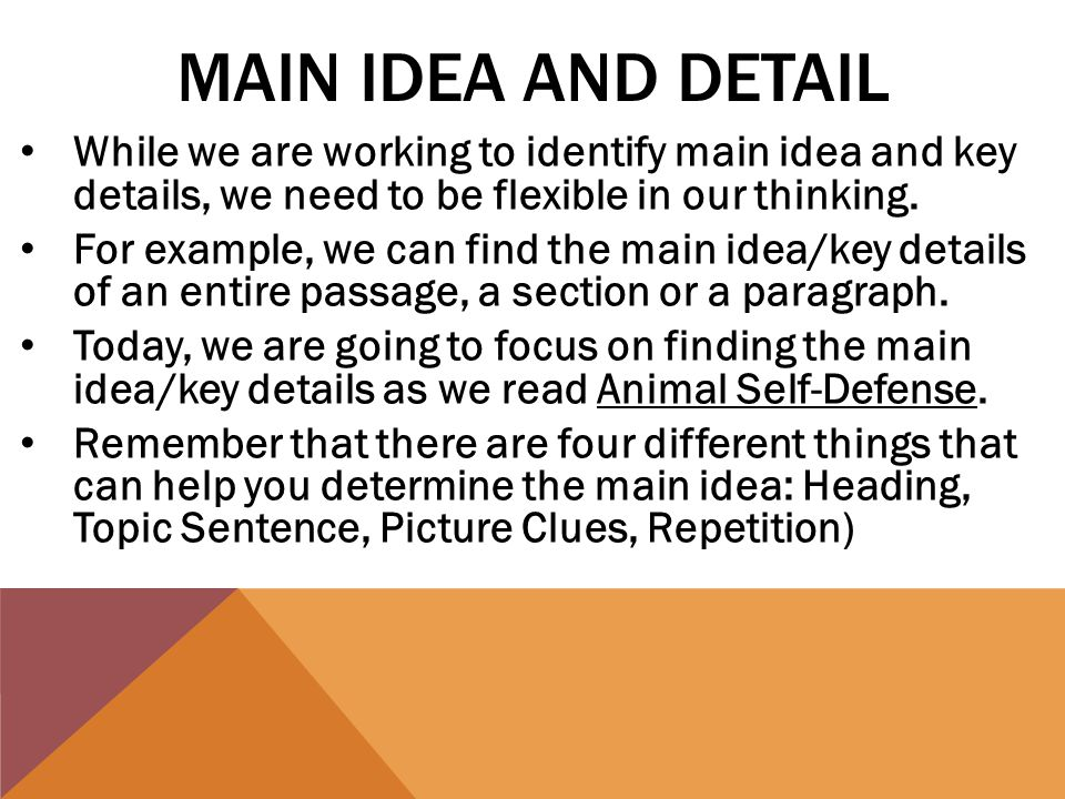 MAIN IDEA AND DETAIL While we are working to identify main idea and key details, we need to be flexible in our thinking.