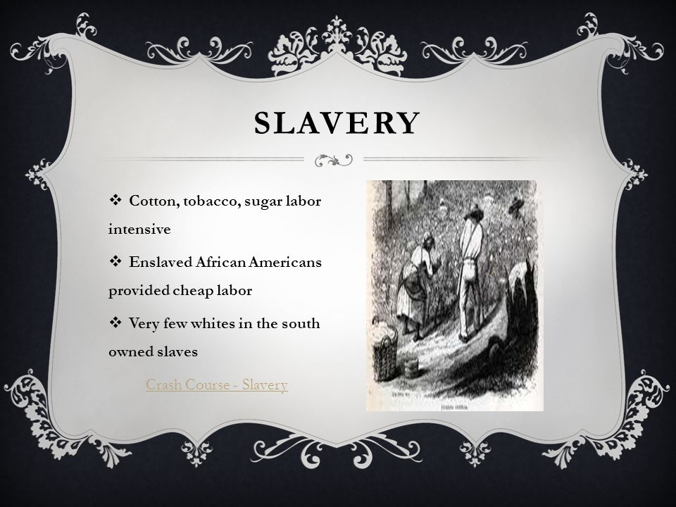  Cotton, tobacco, sugar labor intensive  Enslaved African Americans provided cheap labor  Very few whites in the south owned slaves Crash Course - Slavery SLAVERY