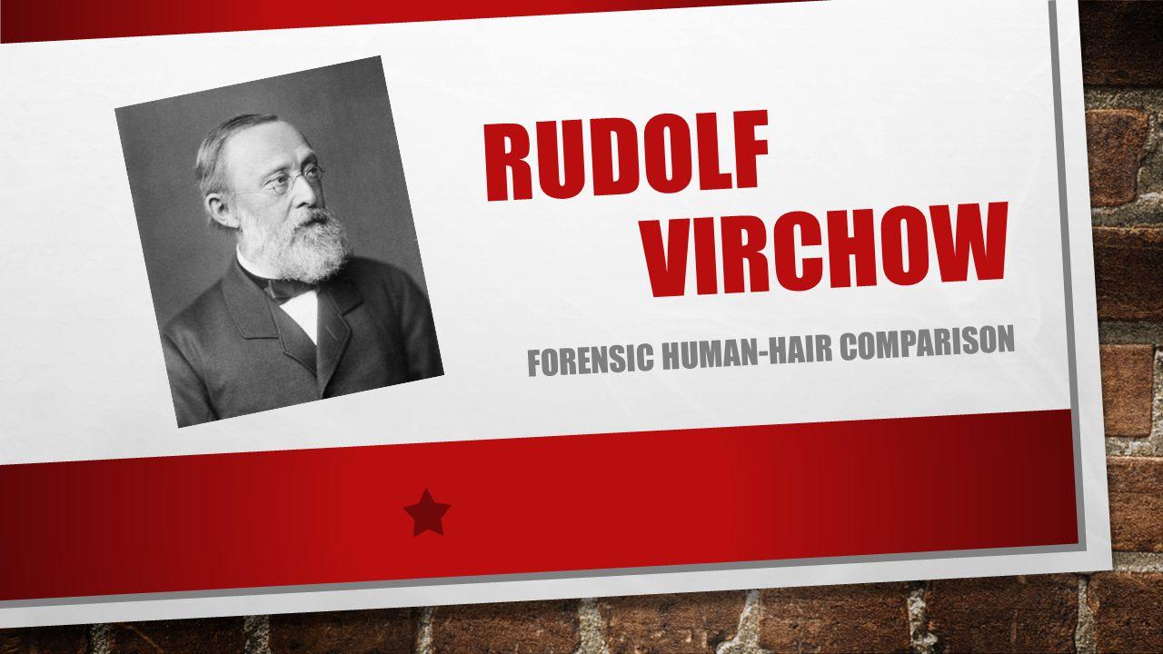 RUDOLF VIRCHOW FORENSIC HUMAN-HAIR COMPARISON