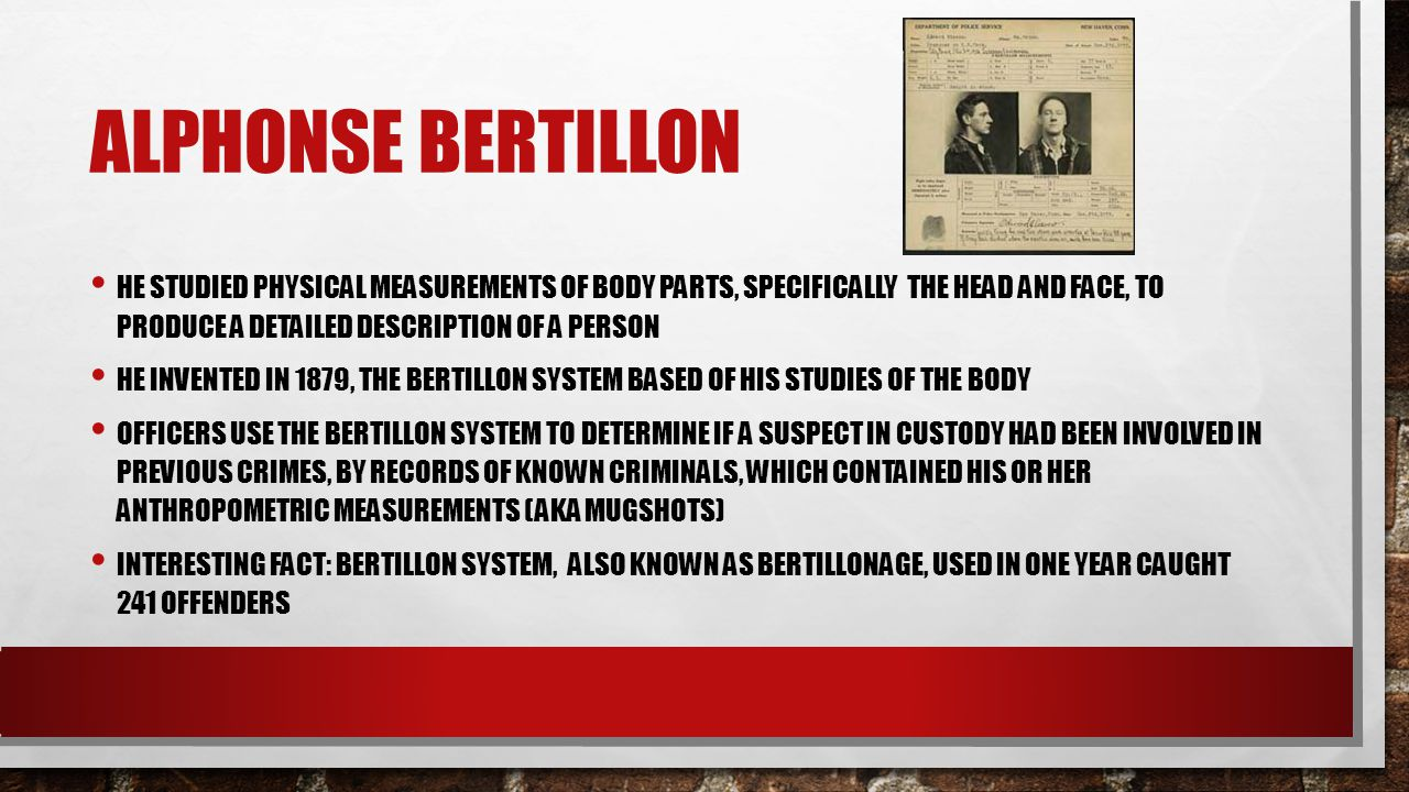 ALPHONSE BERTILLON HE STUDIED PHYSICAL MEASUREMENTS OF BODY PARTS, SPECIFICALLY THE HEAD AND FACE, TO PRODUCE A DETAILED DESCRIPTION OF A PERSON HE IN