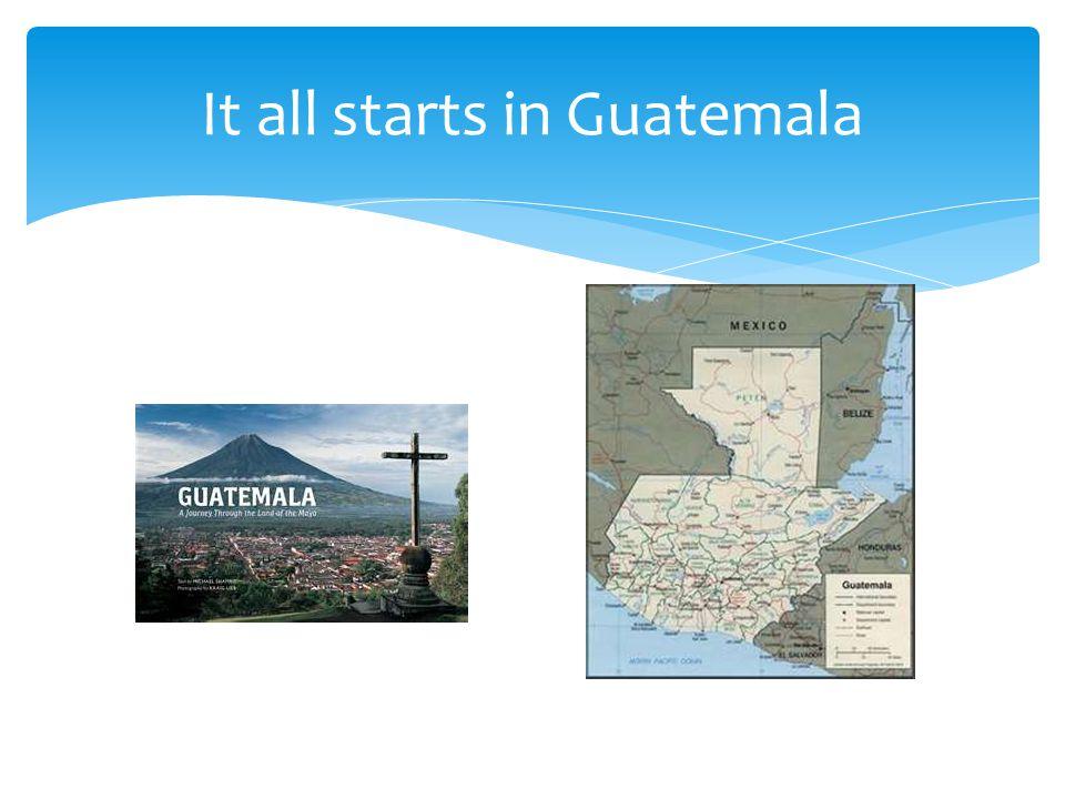 It all starts in Guatemala